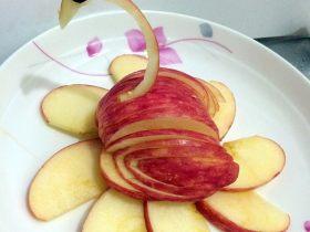 天鹅苹果拼盘