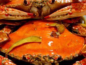 #年夜饭#香焖啤酒蟹