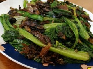 豆豉鲮鱼油麦菜,翻炒,让二者味道混合,加入少许盐,不加也可以,可以尝一下,加入少许糖!再炒一下就可以出锅了!