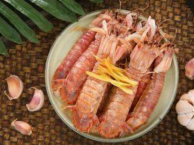 清蒸皮皮虾,保留它最本真的鲜~