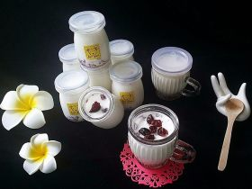 蔓越莓酸奶