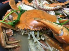 皮皮虾偶遇螃蟹