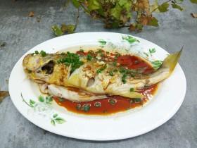 蔥油大黃魚
