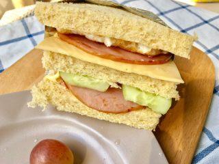 快手早餐 I 吐司三明治(简易版),我发现,自制汉堡或者三明治夹黄瓜比生菜好吃😋,脆脆 甜甜也不干,生菜青菜类么 夹着会饱满好看些~看各自喜好