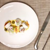 鲷鱼莳萝鲜虾卷,一块儿尝尝鲜…………
