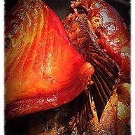 环保健康快速自制腊鱼