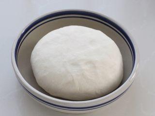 脆底猪肉洋葱锅贴,在面粉中缓缓倒入热水,用筷子搅拌成棉絮状,再揉成软硬适中的面团,覆盖保鲜膜饧面三十分钟