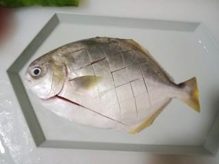 红烧金鲳鱼,金鲳鱼洗干净,然后切成网格状