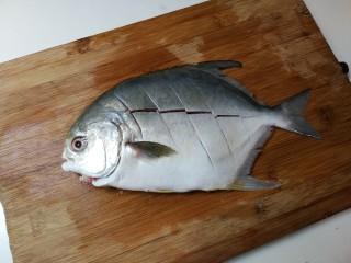 生抽金昌鱼,金昌鱼刮去鱼鳞,去掉鱼肠洗净,表面划切数刀