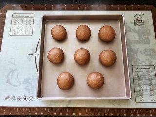 可可冰心面包,7、分割成60克左右的面团,滚圆后有间距的码入烤盘中,等待二次发酵。