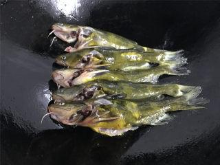 蘑菇汪丁鱼汤,把清洗干净的汪丁放入锅中煎一下。