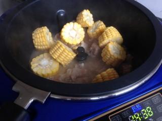 玉米烧排骨,加入玉米段,继续煮十分钟左右