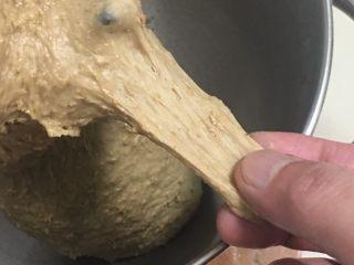 红枣全麦面包+小麦预拌粉版,面团状态可以拉开初膜。