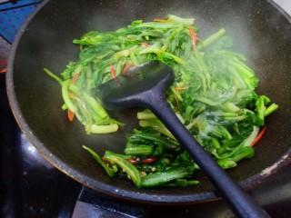 辣炒菜苔,加入少许生抽,盐,味精翻炒均匀,出锅。