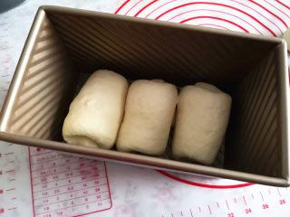 植物油版吐司,摆放在吐司盒里,进行二次发酵,