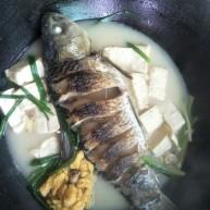 简手鲫鱼豆腐汤