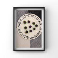 秋葵紫薯小星星