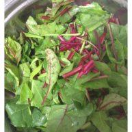 素炒红菜苔