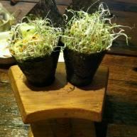 牙菜沙律紫菜卷