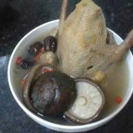 香菇鸽子汤