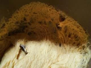南瓜蝴蝶花卷,揉成光面团发酵直2.5倍大(也可放入面包机搅拌至到发酵1),用手指撮一个洞不会回缩,发酵好面团拉开里面如海绵。
