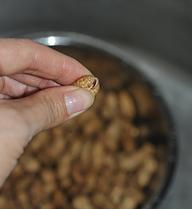 五香卤煮花生 ,清洗好的花生,每个都用手指轻轻捏开一个口子。