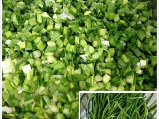 韭菜猪肉馅包子,韭菜洗干净切细备用