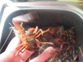 湖南麻辣小龙虾,先把小龙虾尾翅中间一片拉出抽出虾肠