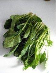姜蒜香汁菠菜,菠菜洗净摘去黄叶