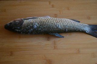 酸菜鱼,草鱼一条让市场的师傅收拾好,拿回来撕去鱼肚子里的黑膜, 洗净后擦干水分