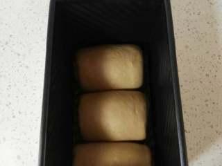 奶咖糯米粉吐司,再次擀开成椭圆形,卷起2.5~3个圈,收口向下,排入吐司模。