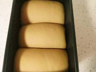 奶咖糯米粉吐司,在38度左右的温暖湿润处进行最后发酵,发至模具的8分满。