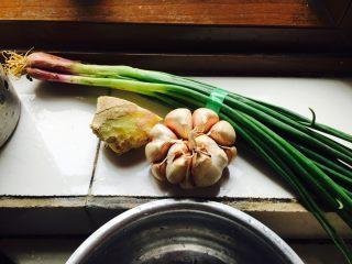 猪肉煎饺,姜蒜葱剁末