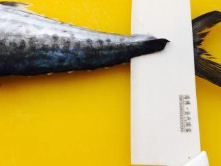 鲅鱼饺子,从鱼尾开始片鱼肉