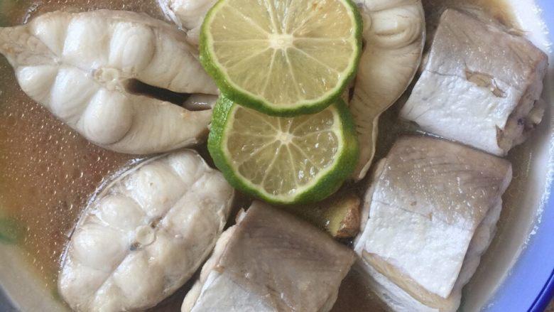 柠檬小鲨鱼