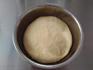全蛋吐司, 把揉好的面团放入容器中,至温暖处发酵。
