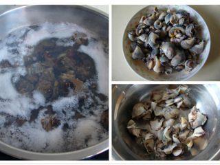 意式海螺沙拉,海螺煮熟,取螺头,洗净片成片备用