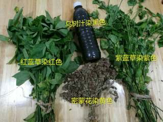 五彩饭,五色染色原料:乌米汁、干密蒙花、红蓝草、紫蓝草、白色就是米的本色