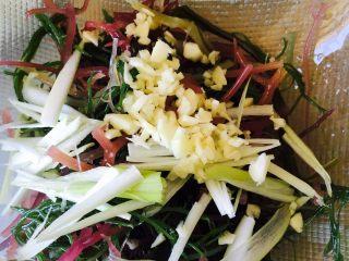 凉拌石花菜,放入盐、味极鲜酱油、醋、葱丝、蒜末搅拌均匀