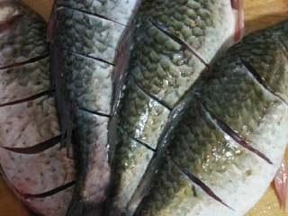 鯽魚豆腐湯,鯽魚收拾干凈洗好,把背上開幾刀,因為我買的鯽魚小,如果你們買了一條大鯽魚,直接切斷也行