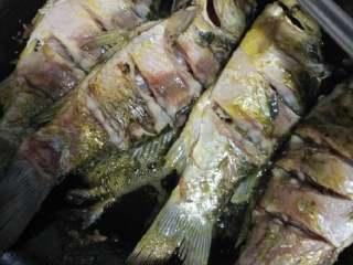 鯽魚豆腐湯,鍋中放油燒熱,把鯽魚放進去煸炒一下,再翻面煸炒一下,感覺魚肉斷生了就可以了,不要炸干了??