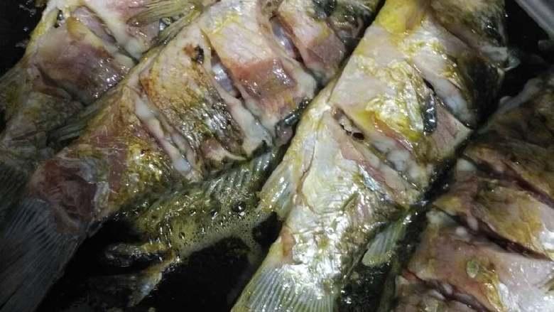 鲫鱼豆腐汤,锅中放油烧热,把鲫鱼放进去煸炒一下,再翻面煸炒一下,感觉鱼肉断生了就可以了,不要炸干了😂