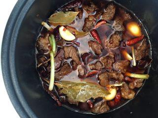 土豆烧牛肉,最后加入几片蒜瓣,大葱 葱白,放入两三颗冰糖,放入刚好盖过牛肉的水,压力锅慢炖两小时