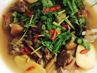 #年夜饭#羊肉煲,为家人送上一碗暖胃的羊肉煲