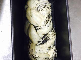 黑芝麻烤面包,入模具,醒发1个小时左右,32度,湿度80%