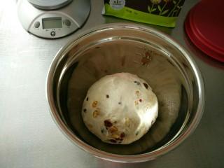 蔓越莓核桃软欧,果料全部揉进面团里面就好了,不用过度搅拌,会断筋的,然后取出面团收圆放入盆中
