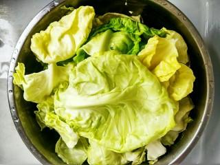 手撕包菜#春意绿#,首先,我们把圆白菜的叶子全部掰下来,洗净后用淡盐水浸泡5分钟,这样可以去除蔬菜上残留的农药