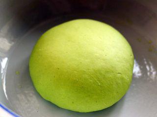 荠菜饺子#春意绿#,和好的面团醒发最少30分钟