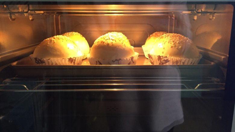 劲脆汉堡包,烤箱预热后,将面团放入烤箱中层180度烤18分钟