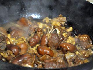黄豆烧猪蹄,当猪蹄焖至软烂时,加1勺鸡精,大火收至汤汁浓稠即可出锅。